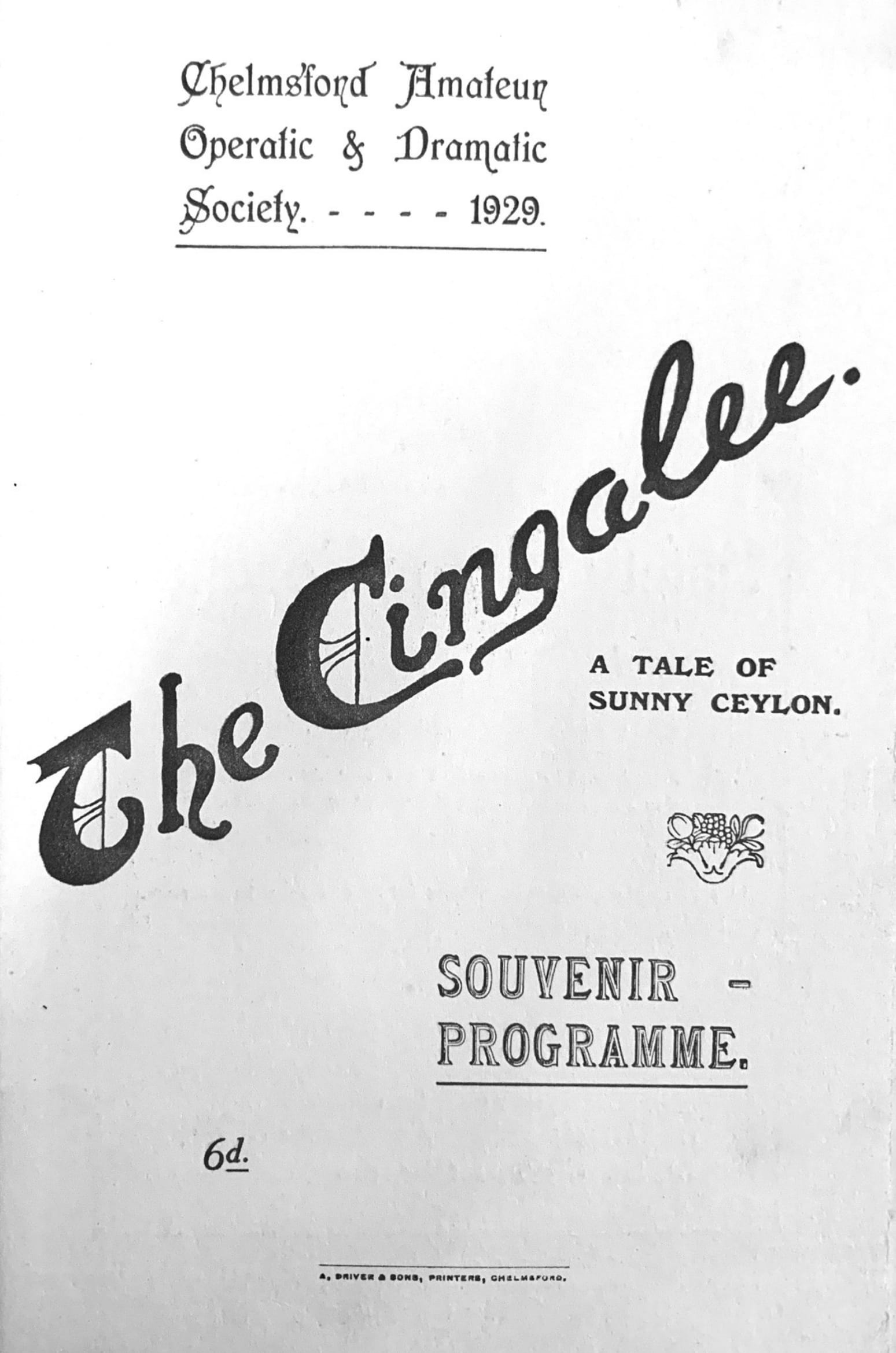 The Cingalee